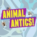 Butlins entertainment - Animal Antics